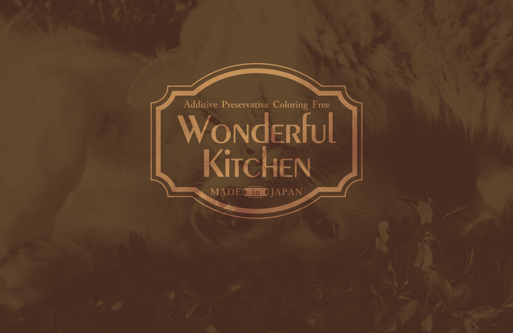 WonderfulKitchen